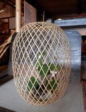 画像1: 竹あかり30-1