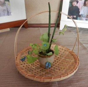画像2: 竹かご制作体験